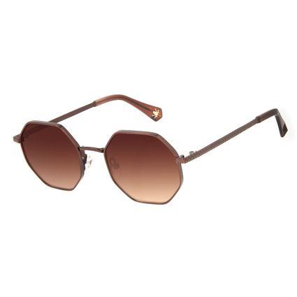 Óculos de Sol Feminino Harry Potter Sapo de Chocolate Degradê Marrom OC.MT.3198-5702